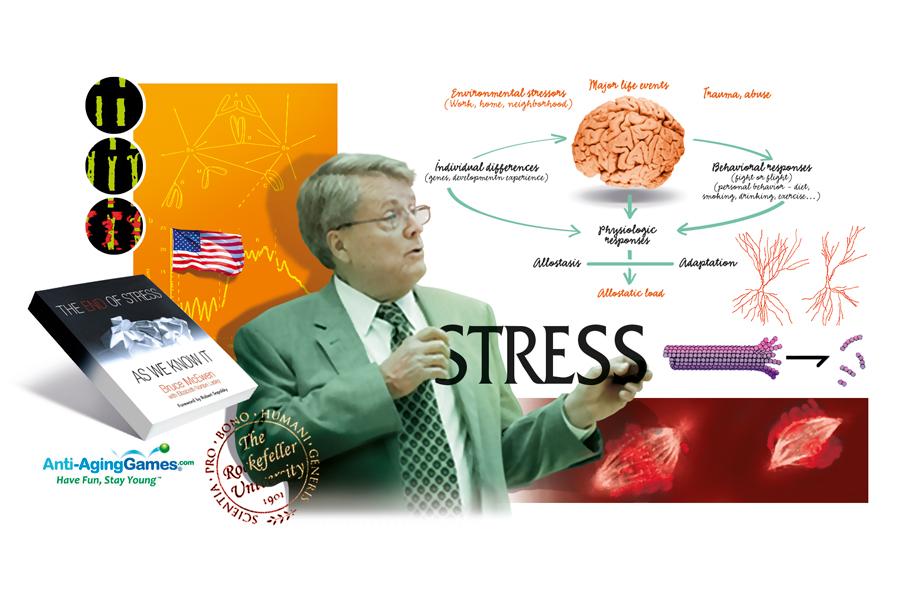 Sdc-Stress-McEwen