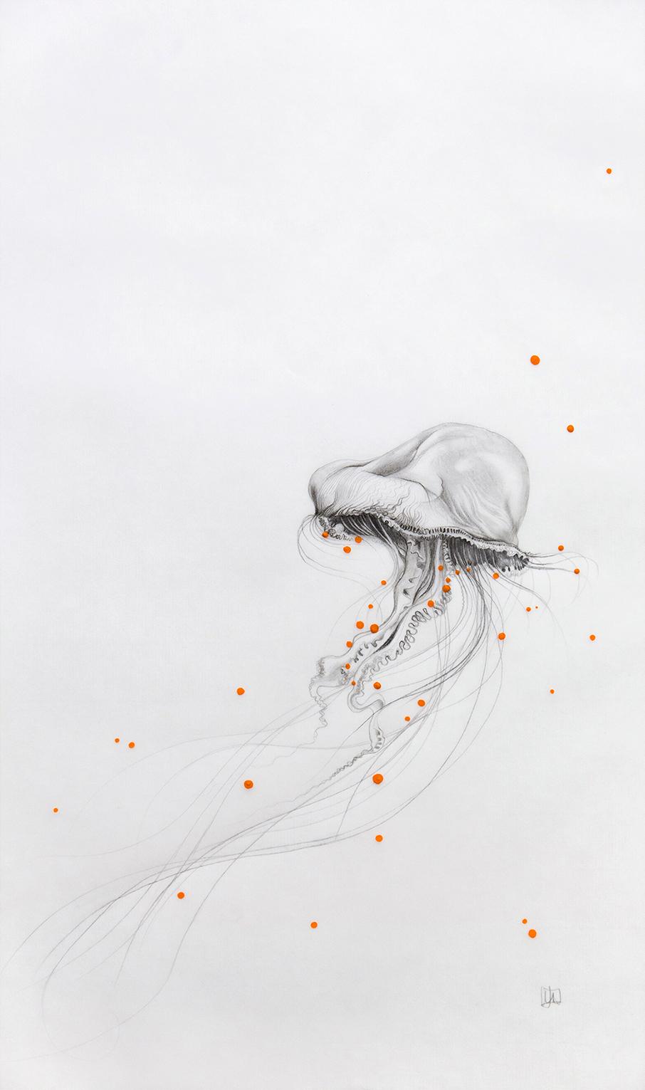 méduse-3