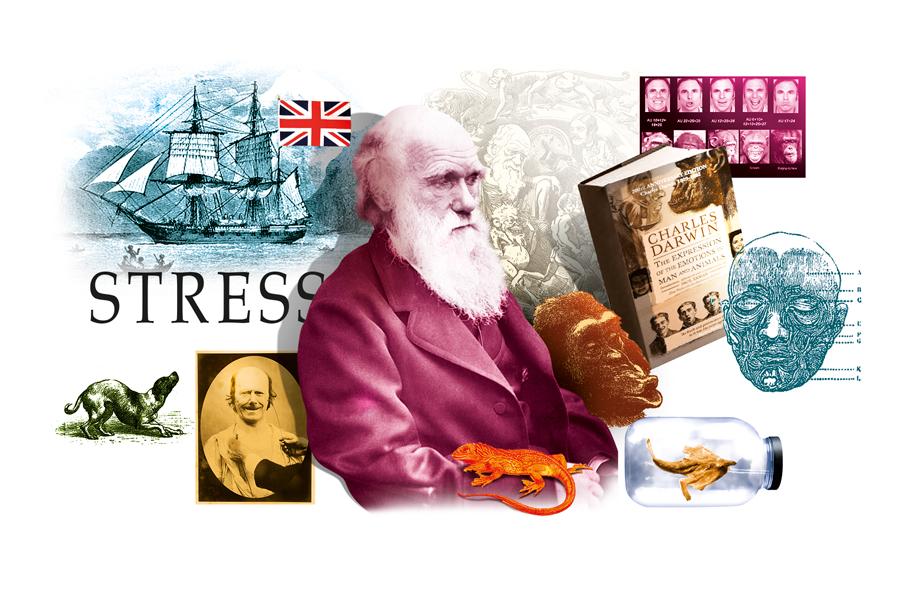 Sdc-Stress-Darwin