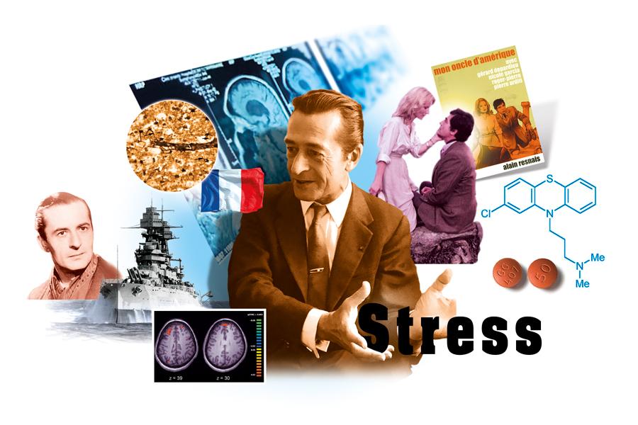 Sdc-Stress-Laborit