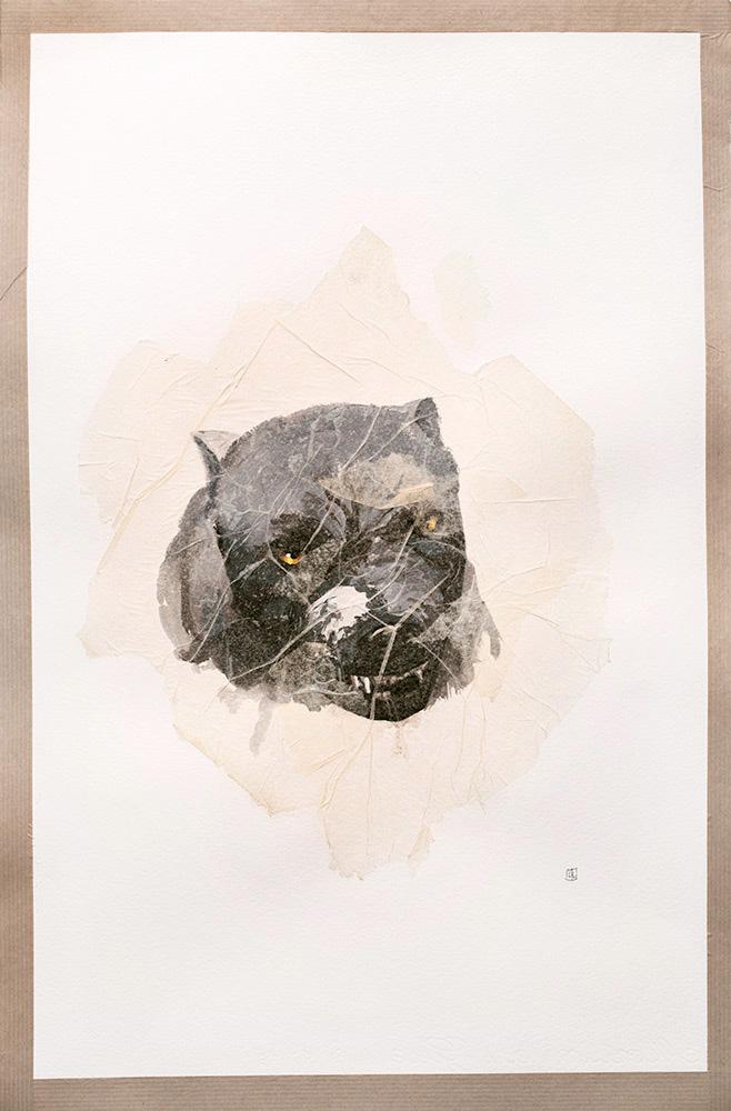 Illustration Nour (étude)-3B